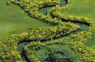 meandrierender Flusslauf im Rapadelta, Sarek NP, Welterbe Laponia, Lappland, Schweden, river course in rapadelta, lapland, sweden