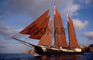 Segelschiff Adelaar, Sailing Ship, Tall Ship Adelaar