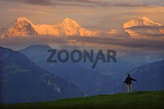 Blick auf Eiger, Moench, Jungfrau, Schweiz, Berner Oberland, Swiss Alps, Switzerland