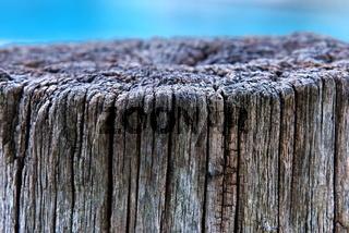 Holzpfahl