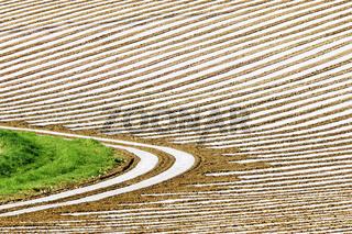 Gemuesefelder mit Plastikplanen bedeckt, Baden-Württemberg, Deutschland, Vegetablefield
