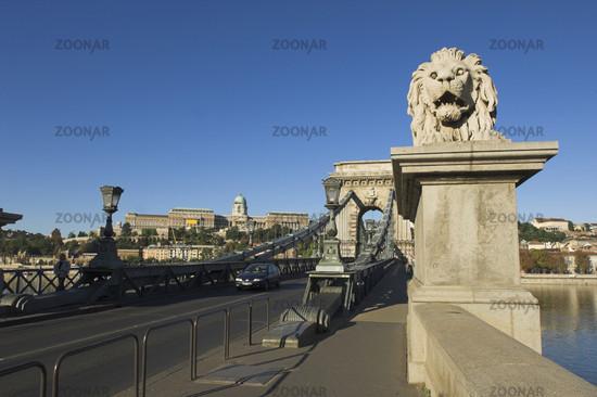 Budapest, Löwenskulptur an der Kettenbrücke (Széchenyi lánchíd)