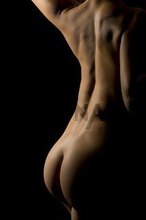 Körper