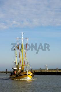 Krabbenkutter/ Shrimp trawler