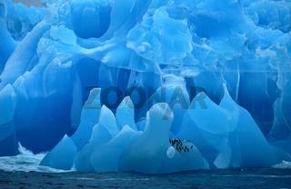 Blauer Eisberg in der Weddel-See zwischen den Süd-Sandwich-Inseln und Südgeorgien.