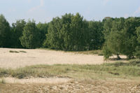 Nature reserve 'Boberger Dunes'