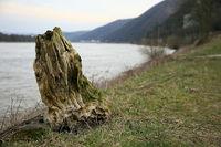 Rhein-Fund
