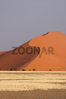 Dünen in der Namib; Dunes in the Namib desert