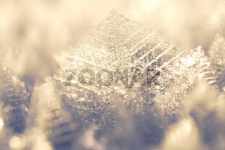 snowcrystal, schneekristall, stubba nature reserve, naturreservat, laponian area, laponia, norrbotten, lapland, lappland, sweden, schweden,
