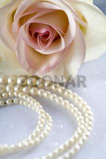 Rose und Perlen