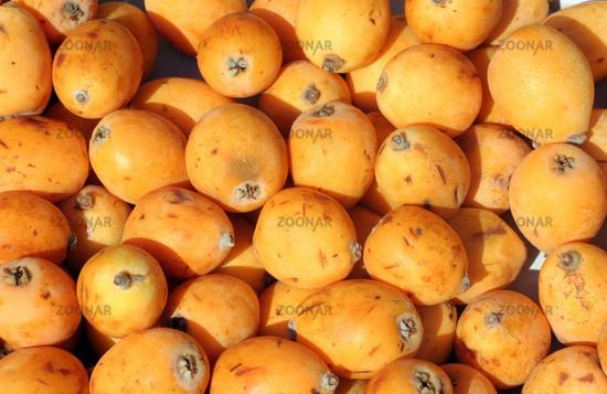 Medlar fruits   Mispeln (Mespula)