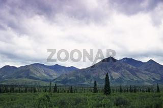 mountain landscape, gebirgslandschaft, berglandschaft, denali nationalpark and preserve, alaska interior, usa,
