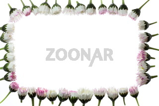 floral frame with space for your text