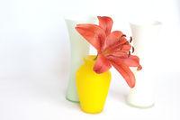 Vasen mit Lilie