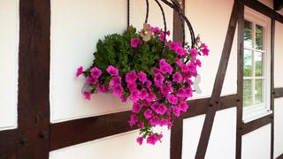 Blumenampel und Fachwerk