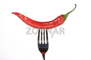 single red hot chili pepper on a fork