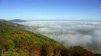 Rheingraben im Nebel