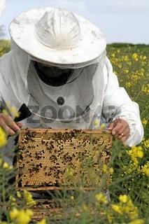 Imker, Bee-Keeper, Beekeeper