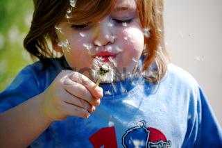 Kind mit einer Pusteblume