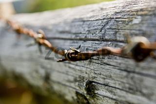 Rostiger Stacheldraht barbed wire
