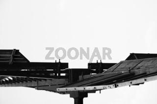 Bockwindmühlenflügel