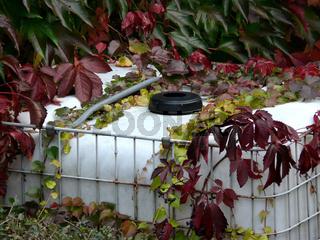 Wasserbehälter im Garten