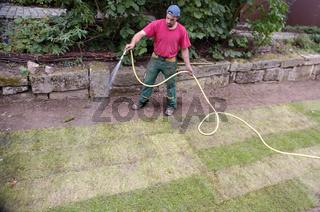 Laying sod | Verlegung von Rollrasen