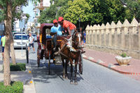 A horse-drawn carriage seen on the streets of Santo Domingo