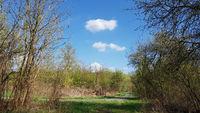 Weg am Fuß der Arkenberge in Berlin im Frühling