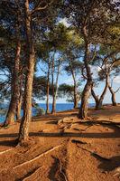 Coastal Sunset on Costa Brava in Spain
