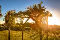Jewish traditions wedding ceremony. Wedding canopy chuppah or huppah with lens flare