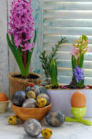 Colorful hyacinths and Easter eggs.