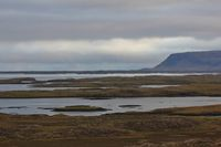 Cloudy morning in the westfjords of Iceland.