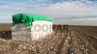 Fresh Bail Harvest Cotton Farm Field Texas Agriculture