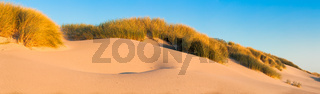 Sand dunes and grasses on a beach - panorama