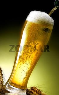 mug of frothy beer