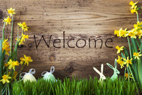 Easter Decoration, Gras, Text Welcome