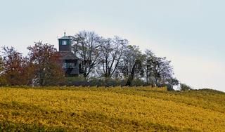 Hochwart Insel  Reichenau am Bodensee