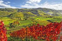 Herbst an einem sonnigen Tag im Schwarzwald, Deutschland