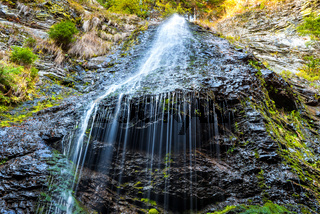 Waterfall in the wild forest