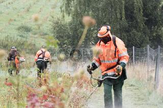 Gruene Achse Berlin - Nuernberg - Umweltschutz an der neuen Schnellfahrstrecke