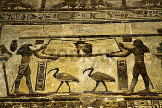 Egypt Dendarah Temple Wall Carvings