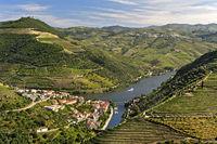 Der Ort Pinhao umgeben von Weinberg-Terrassen im Tal des Rio Douro, Alto Douro, Portugal