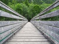 Brücke am Plansee in Österreich
