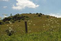 Dörnberg, Landschaft im Habichtswald