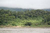 LAOS LUANG PRABANG MEKONG RIVER
