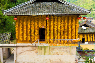 Xijiang Miao Village Corn Hanging House Wall China