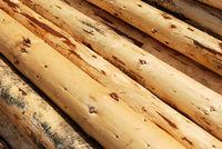 Heap of Logs