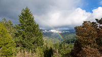 Rainbow Over Redwood Valley