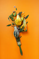 creative autumn composition of pumpkins